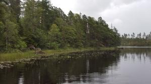 Vid Ottersjön