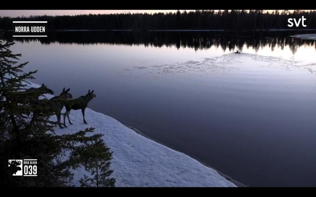 Screenshot_20200507-200954_SVT Play